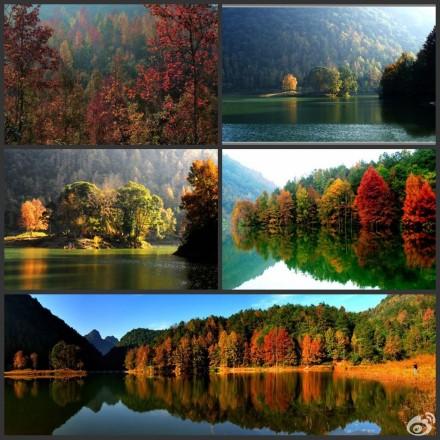 广西德保红叶森林公园晋级国家aaaa级旅游景区