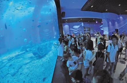 南宁融晟极地海洋世界8.18正式开园 海洋世界特色,亮点